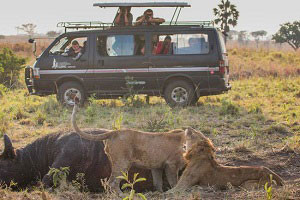 kjong-uganda-safaris