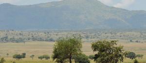 Uganda-national-parks-kidepo-valley-national-park