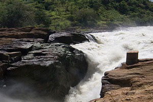 top-6-recommended-activities-to-do-in-murchison-fall-national-park3