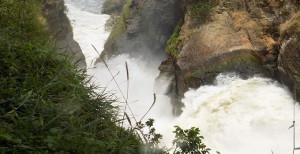 MURCHISON-FALLS-PARK-WILDLIFE-SAFARI-IN-UGANDA
