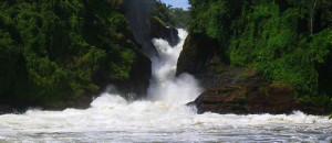 Uganda national parks murchison falls national parks