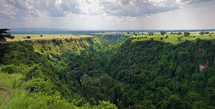 Queen Elizabeth Wildlife Kyambura gorge