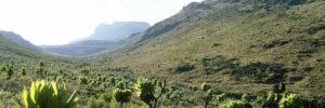 Mount elgon hiking safaris in Uganda