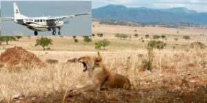 4 Days Uganda Fly in Safaris to Kidepo Valley National Park