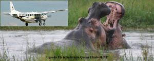 5 Days Uganda Fly in Safaris to Queen Elizabeth NP
