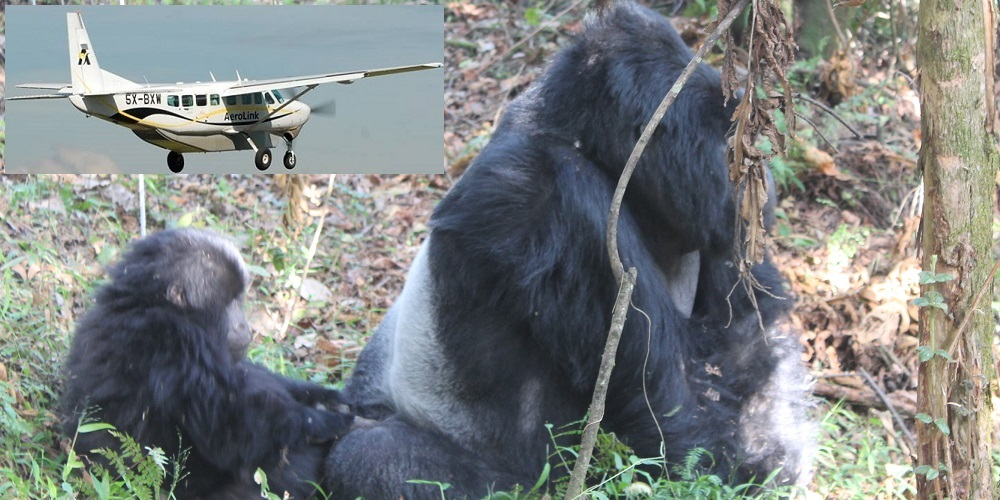 3 Days Uganda gorilla trekking Fly in Safari