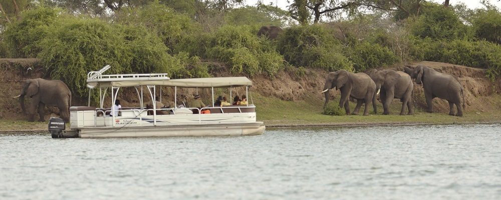3 Days Queen Elizabeth wildlife and chimpanzee safari in Uganda