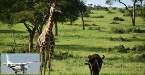 2 Days Murchison Falls Fly in Safaris Uganda