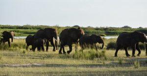 26 Days Uganda adventure vacation
