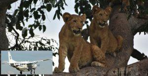 5 Days Uganda fly in safaris to Queen Elizabeth National park