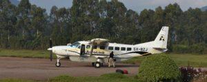 6 Days Masai Mara flying safari and Gorilla trek bwindi